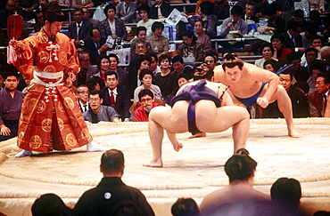 Two sumo wrestlers staring each other down before a match, Kyoto city, Kyoto, Japan