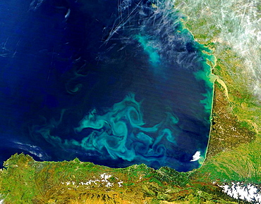 Impressive clouds of blue and green phytoplankton swirl and twine in the waters of the Bay of Biscay in this true-color Moderate Resolution Imaging Spectroradiometer (MODIS) image from the Terra satellite on April 25, 2004