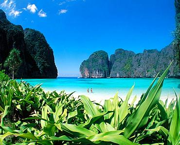 Koh phi phi Island, Krabi region, Thailand