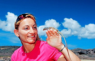 Tourist and Blue whiptail lizard, Cnemidophorus murinus ruthveni, Netherlands Antilles, Bonaire, Bonaire, Washington Slagbaai National Park, Boka Chikitu