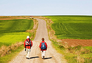 Pilgrims on the Way of St, James, Santo Domingo de la Calzada, La Rioja, Spain