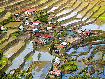 water filled rice terraces surround the Ifugao village of Batad, a UNESCO World Heritage Site, Philippines