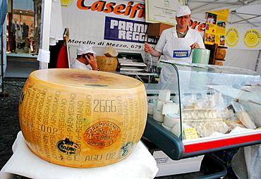 Parmigiano Reggiano cheese seller, Modena, Italy