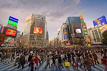 Nov, 2007, Japan, Tokyo City, Shibuya Disrict