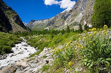 Rio home in Glacier National Park Les Ecrins, Los Alpes, Briancon, France