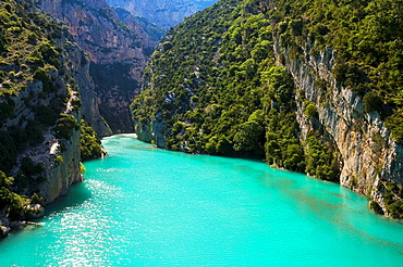 Verdon Regional Natural Park, Canyon of the Verdon Gorges, the High Alps of Provence, Alpes de Haute-Provence, Provence, Provence, France