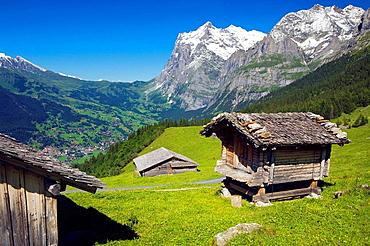 Landscape at the base of the mountain of Eiger  Grindelwald, Alpiglen  Kleine Scheidegg  Grassland and cabins farm  Berneses Alps  Switzerland
