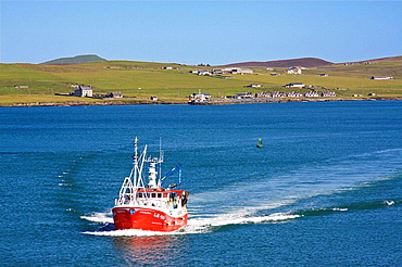 Fishing boat at Lerwick, with Bressay beyond, Shetland, Scotland, UK