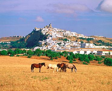 Arcos de la Frontera, Cadiz province, Spain