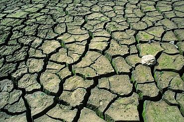 Vagli, dryness earth, Tuscany, Italy
