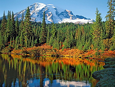 Mt, Rainier in autumn reflecting in Reflection Lake, Mt, Rainier  National Park, Washington State, USA