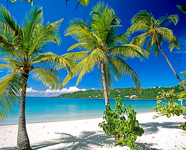 Magens Bay, St, Thomas, US Virgin Islands, West Indies, Caribbean