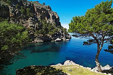 Cala de sa Calobra at the mouth of the Torrent de Pareis, bay at the North Coast, Mallorca, Baleares, Spain