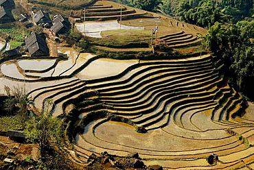 Terrace fields at Moung Hoa valley, Sa Pa, Vietnam