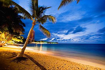 Beach, Las Terrenas, Dominican Republic