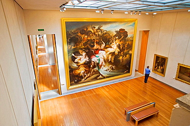 Musee des Beaux Arts (Museum of Fine Arts), the interior, Lyon, Rhone-Alpes, France