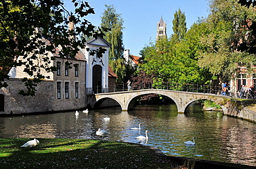 Arch bridge over canal  Medieval town of Bruges, Belgium  Brugge
