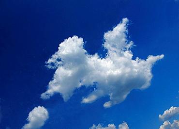 Pegaz cloud, concept