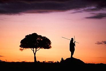 Maasai silhouette in African landscape, Masai Mara, Kenya