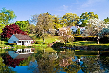 Whitewing Farm Bed and Breakfast, Chester County, Kennett Square, Pennsylvania, white wooden cottage beside pond