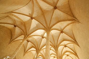 The spirally fluted columns Llotja, XV century Palma Mallorca Balearic Islands Spain