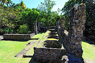 Sugar Cane Plantation Ruins St Kitts Basseterre Caribbean Island Cruise NCL