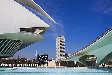 Queen Sofia Palace of the Arts, City of Arts and Sciences, Valencia, Comunidad Valenciana, Spain