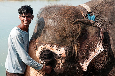 Asian elephant and mahout trainer in the Rapti River in Chitwan National Park, Nepal