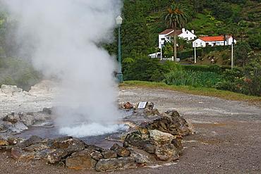 Hot Spring / Furnas / Sao Miguel Island / Azores / Portugal