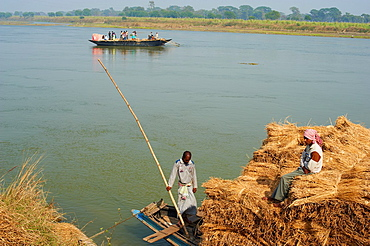 India, West Bengal, Hooghly river, part of Ganges river, straw rice transportation