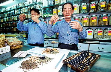 Traditional Herbalists at work in their shop, Wanchai, Hong Kong, China