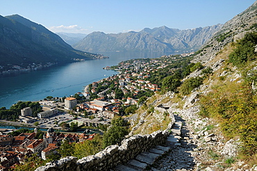 Montenegro, Kotor Bay Kotor Path to the old fortress and view on old town and bay