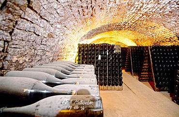 Champagne Drappier wine cellars built 12th century by Cistercian monks: Charles de Gaulle used to be an habitual consumer of this kind of champagne, Urville, Aube, France
