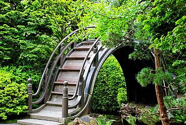 Japanese Tea Garden at Golden Gate Park, San Francisco, California, USA
