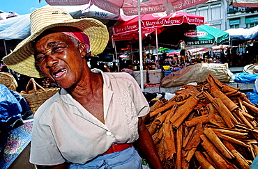 The market, Pointe a Pitre the capital, Guadaloupe, French Antilles, France.