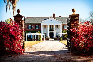 Boone Hall Plantation in Charleston, SC