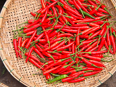 Chilis for sale in market in Hoi An, Vietnam
