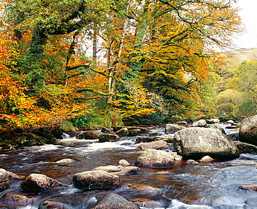 The East Dart River at Dartmeet in Dartmoor National Park, Devon, England, United Kingdom