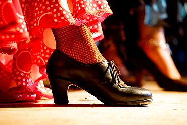 Flamenco Show Jerez de la Frontera, Cadiz, Andalusia, Spain