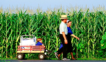 Amish couple carrying their son in a cart, Pennsylvania, USA