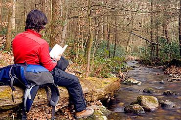 Backpacker reading by creek, Daniel Ridge, Pisgah National Forest, near Brevard, North Carolina, USA