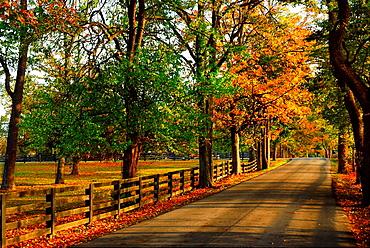 Kentucky Back Roads