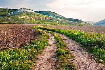Road in El Cercado Cabanas de Yepes Toledo Castilla la Mancha Spain