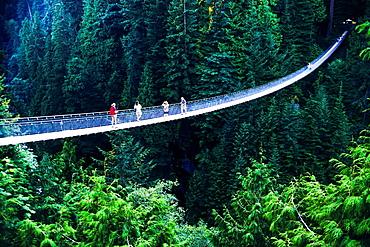 Suspension bridge over Capilano Canyon, North Vancouver, British Columbia, Canada