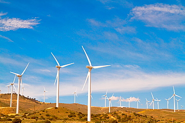 Windmills during spring
