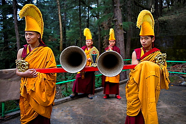 Ritual, in Namgyal Monastery, in Tsuglagkhang complex McLeod Ganj, Dharamsala, Himachal Pradesh state, India, Asia