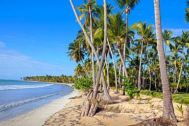 Playa Bonita, Las Terrenas, Samana Peninsula, Dominican Republic, West Indies, Caribbean