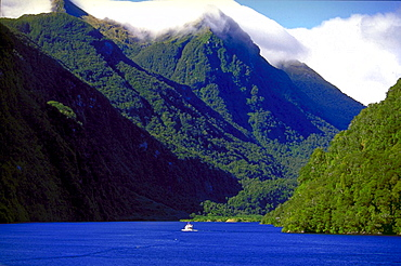 New Zealand, fjord, Milford Sound, mountains, ocean, water, landscape. New Zealand, fjord, Milford Sound, mountains, ocean, water, landscape