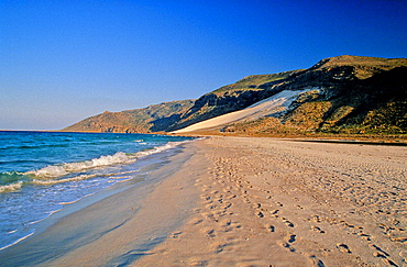 Dilisha Beach, Socotra Island, Arabian Sea, Yemen, Arabia, Orient, landscape. Dilisha Beach, Socotra Island, Arabian Sea, Yemen, Arabia, Orient, landscape