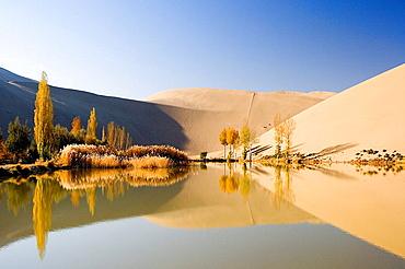 China, Asia, Silk Road, province Gansu, Dunhuang, desert, Gobi, crescent lake, Yueyaquan, lake, crescent, desert, wate. China, Asia, Silk Road, province Gansu, Dunhuang, desert, Gobi, crescent lake, Yueyaquan, lake, crescent, desert, wate